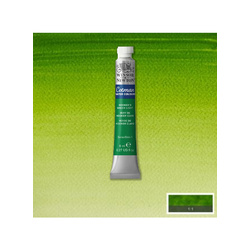 Cotman Student Water Colours Sap Green 599 8ml