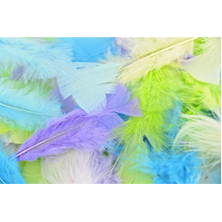 Feathers: Turkey 15cm Assorted Pastel Colours 60g Bag