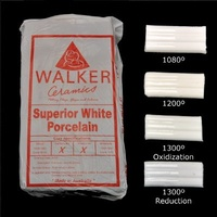 Superior White Porcelain Clay 10kg